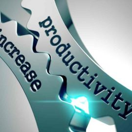 The 5 traits of a productive business